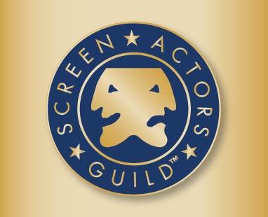 Logo-sag-org