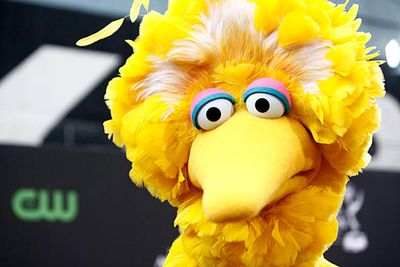 Big Bird, PBS